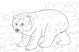 Small Picture Bear Coloring Pages 1 Coloring Kids
