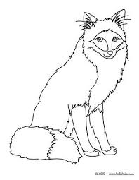 Forest Animal Coloring Page Fox Coloring Page More Forest Animals Coloring Sheets On Hellokids