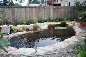 15 best koi pond ideas for your garden
