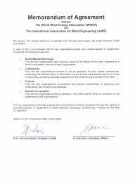 Iawe International Association Of Wind Engineering