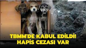 Hayvanları Koruma Kanunu Yasalaştı