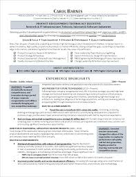 Summary For Resume Example Executive Summary Resume Example Case Manager Examples Vesochieuxo 28
