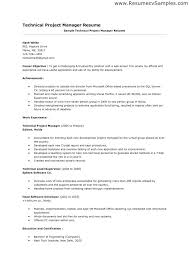 Sample Project Manager Resume Objective Best Project Manager Resume Best Technical Project Manager Resume 7