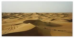 Зона пустынь сообщение животный и растительный мир климат и почвы Сообщение о пустыни