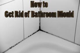 how to get rid of bathroom mould