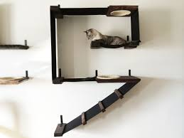 marvelous ideas wall mounted cat shelves by design cat shelving