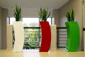 modern office plants. Modern Office Plants. Are Present Within All Work Environments. The Benefits Of Incorporating Plants