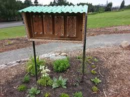 mason nest swiss european home ble modern bee house plans carpenter bees full carpent pictures
