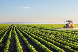 how agriculture can reduce greenhouse gas emissions