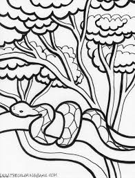 Small Picture Coloring picture Printable snake coloring pages coloring mesnake