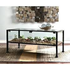 interior outstanding terrarium coffee table 37 furniture nice style 2 door compartment glass coffee table terrarium