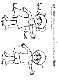Small Picture Body Parts Name Worksheet And Parts Of The Body Coloring Pages