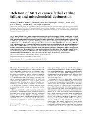 an excellent essay sample mla format