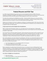 Resume Samples For Jobs In Usa Unique 21 Federal Resume Format