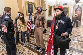 Trump to Pardon 'Patriots' Involved in Capitol Attack? Truth About WH Pardons Attorney Seeking Names in Viral Post