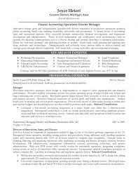 Managing Director Job Description Auto Finance Manager Job Description Finance Accounting Operations 23