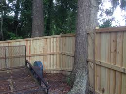 building a fence around trees - Google Search