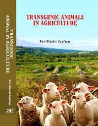 Transgenic Animals Buy Transgenic Animals In Agriculture First Edition Book