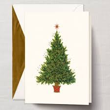 William Arthur Sparkling Christmas Tree Greeting Cards | PaperStyle