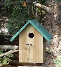 woodworking projects for kids bird house. building the $2 birdhouse. woodworking projects for kidswoodworking kids bird house
