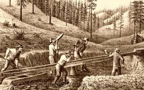 Image result for america gold rush
