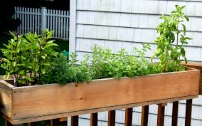 Kitchen Herb Garden Planter Container Herb Garden Herb Container Gardening Tips