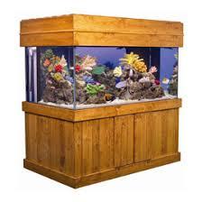 fish tank stand design ideas office aquarium. aquariums by size fish tank stand design ideas office aquarium