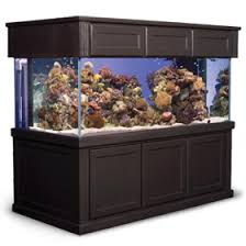find quality aquarium furniture. Find A Wide Selection Of Fish Tank Or Aquarium Stands And Canopies At Marineland. Quality Furniture