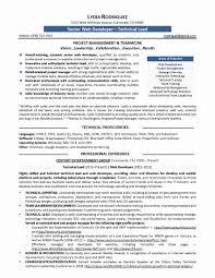Software Testing Resume Format For Freshers New Resume Samples