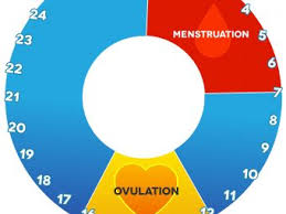 Period Chart To Avoid Pregnancy Safe Period When To Have Sex To Avoid Pregnancy