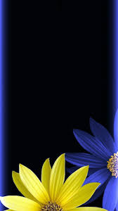 Iphone Wallpaper Blue And Yellow