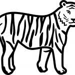 Small Picture Tiger Coloring Pages For Preschool Preschool Crafts Coloring Pages