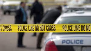 gun rights essay juvenile felony