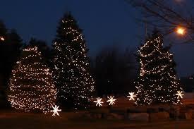 lighting outdoor trees. christmas lights outdoor trees photo 10 lighting o