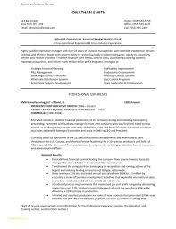 free executive resume templates free executive resume templates takenosumi com