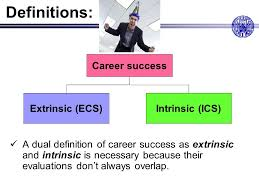 Career Success Definition Personality And Job Performance Gerhard Ohrband Ppt Download