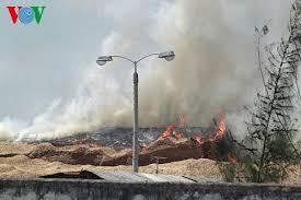 Cháy lớn ở cảng Quy Nhơn do lái xe hút thuốc lá vứt bừa bãi | Tài chính |  BizLive