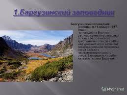 Презентация на тему Подготовила Ученица б класса Васина  4 Баргузи́нский запове́дник