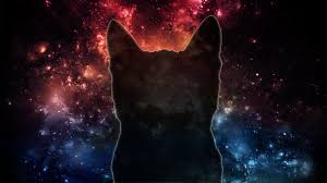 Space Cat [1920x1080] : wallpapers