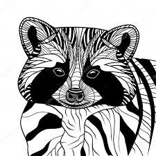 енот тату эскиз енот или кун головы векторные иллюстрации животных