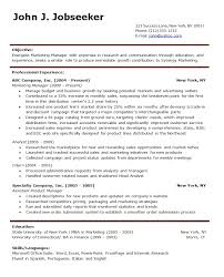 Professional Resume Template Word 4 Basic 22 Samples In Format Sample And