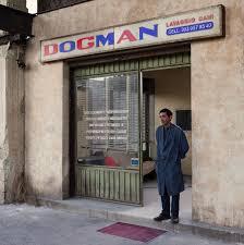 """Résultat de recherche d'images pour """"dogman film"""""""