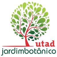 Linum austriacum subesp. collinum - Jardim Botânico UTAD