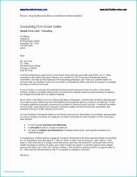 Sample Executive Summary For Resume One Page Executive Summary Example Best Of Security Resume