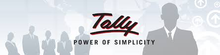 Image result for tally accounting software