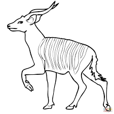 Small Picture African Forest Antelope Bongo coloring page Free Printable