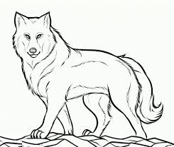 Beautiful Idea Free Printable Wolf Coloring Pages Lihatsinopsis