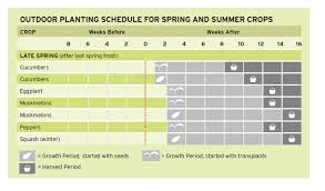 Planting Chart Zone 6 Planting Chart Cheat Sheets Square Foot Gardening