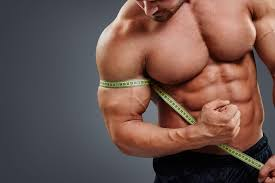 best workout routine for muscle gains