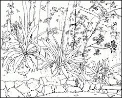 Small Picture Nature coloring pages to print ColoringStar